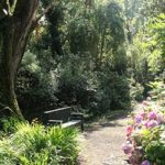 valentia island gleaneam gardens